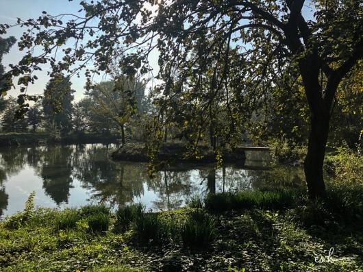 02- villa selvatico-sartori -30012019