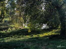 10- villa selvatico-sartori -30012019