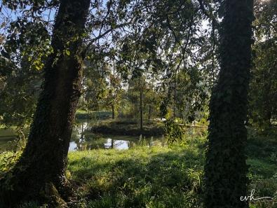 18- villa selvatico-sartori -30012019
