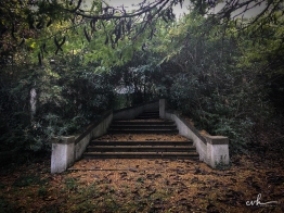 19- villa selvatico-sartori -30012019