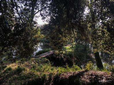 21- villa selvatico-sartori -30012019